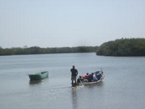 Der Name Gambia kommt wohl aus dem Portugiesischen und bedeutet Handel.